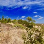 LARGE BUILDING PLOT WITH SEA VIEWS